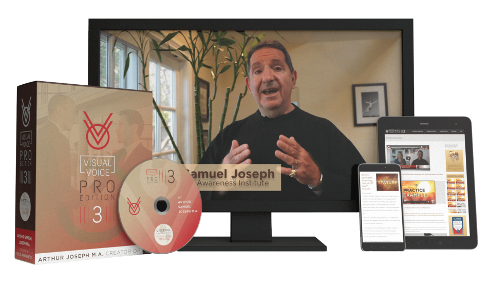 visual voice pro 3 review